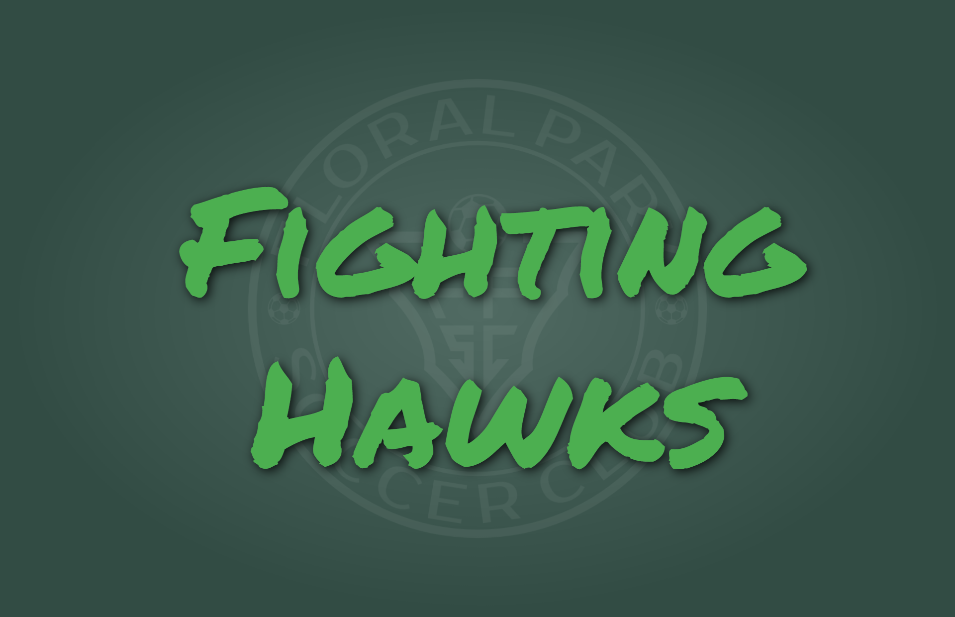 Fighting Hawks Gallery